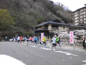 さくらマラソン②