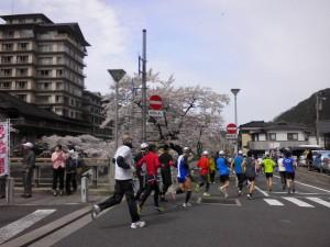 さくらマラソン③